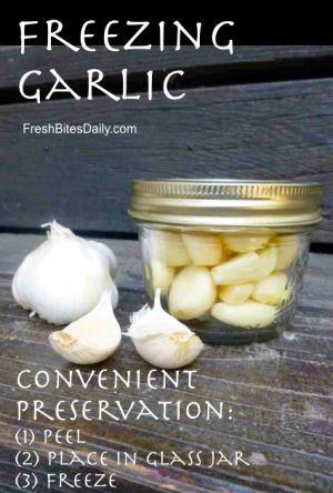 Freezing Garlic at FreshBitesDaily.com