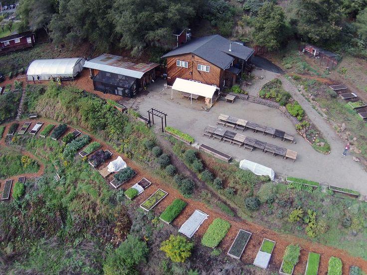 Manresa, Love Apple Farms, Restaurants that Farm