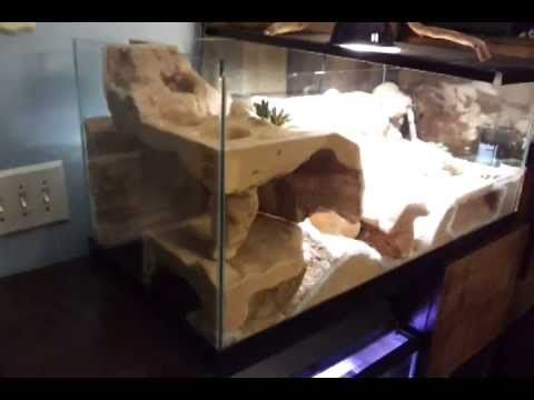 ▶ Leopard Gecko Custom Cage - YouTube