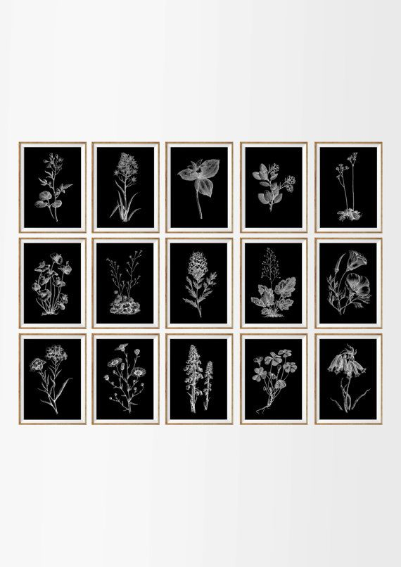 Chalkboard botanical art prints large set of 15 botanical wall art chalkboard wall art