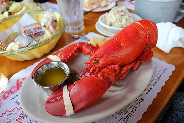A perfectly-cooked steamed Maine lobster needs nothing else, as served at Cook's Lobster House in Harpswell, Maine