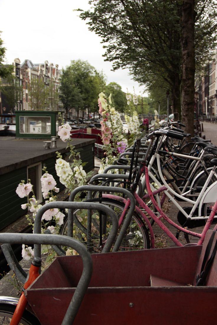 They were then lucky enough to live in The Netherlands for two years, biking around and traveling Europe.
