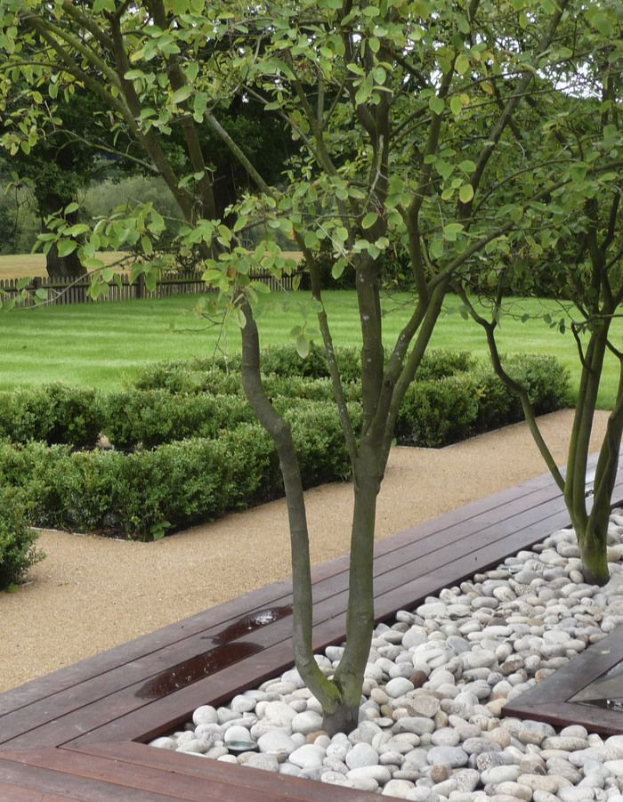 White pebbles with trees for a minimalist garden design.  Source: Modernist elements make up this Sussex garden by Andy Sturgeon