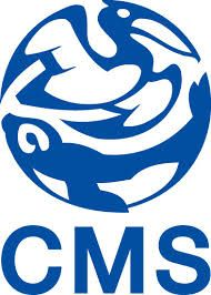 Best Drupal #CMS Customization Services http://www.articlesnatch.com/Article/SEO-Friendly-Drupal-CMS-Customization-Services-in-Demand/4580044