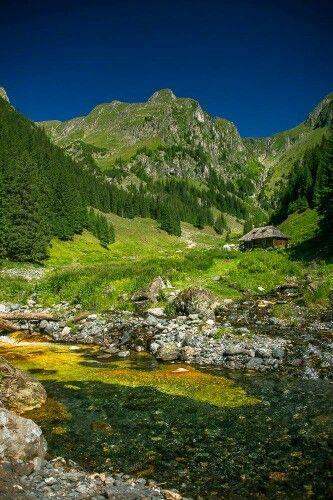 Valea Rea - Făgăraș Mountain!