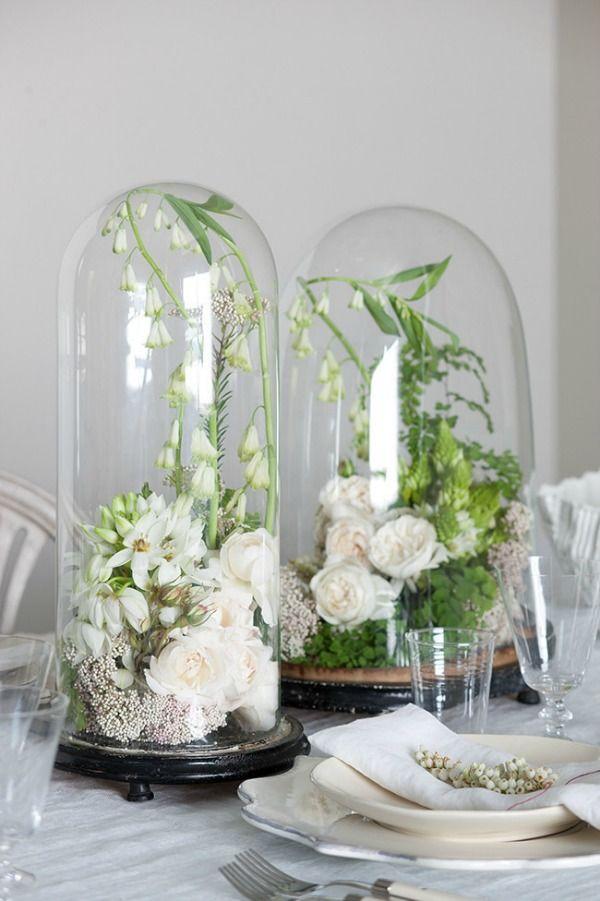 bloemen-onder-stolp