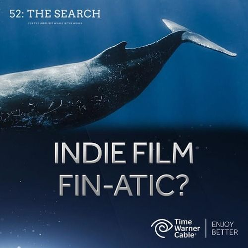 52: The Search (Upcoming documentary about the 52 Hertz whale)