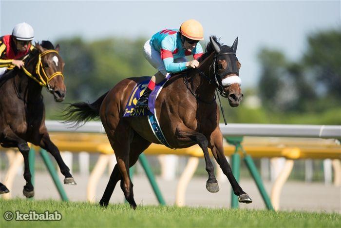 アーモンドアイ アーモンドアイ 牝馬 美しい馬