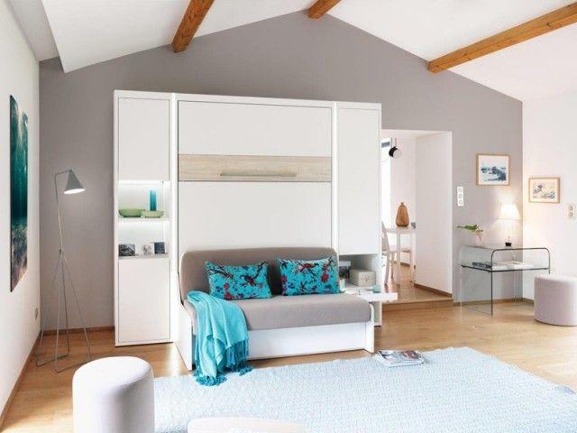 Meubler Un Studio 10 Meubles Malins Pour Gagner De La Place Mur Lit Studio Meuble Mobilier De Salon