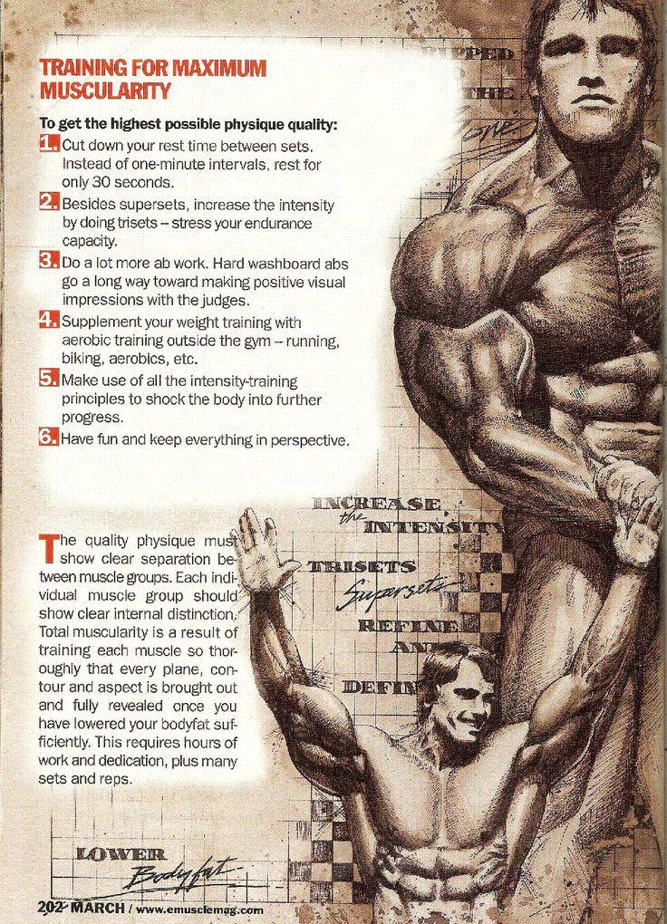 Arnold Schwarzenegger: 013 - Training For Maximum Muscularity | BeasTmoDe+ | Pinterest | The ...