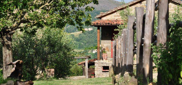 Torre Morgana #Agriturismo #Vegan in #Umbria: Intervista #BIGvegan