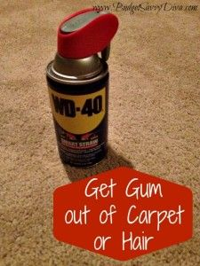 How To Get Gum Out Of Carpet or Hair