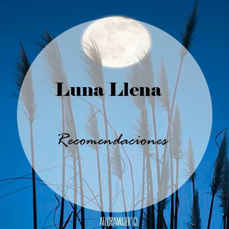 165 Best Images About Luna On Pinterest Tes Amor And
