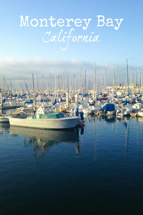The Best of Monterey Bay, California - from the Monterey Bay Aquarium to Point Lobos State Reserve!