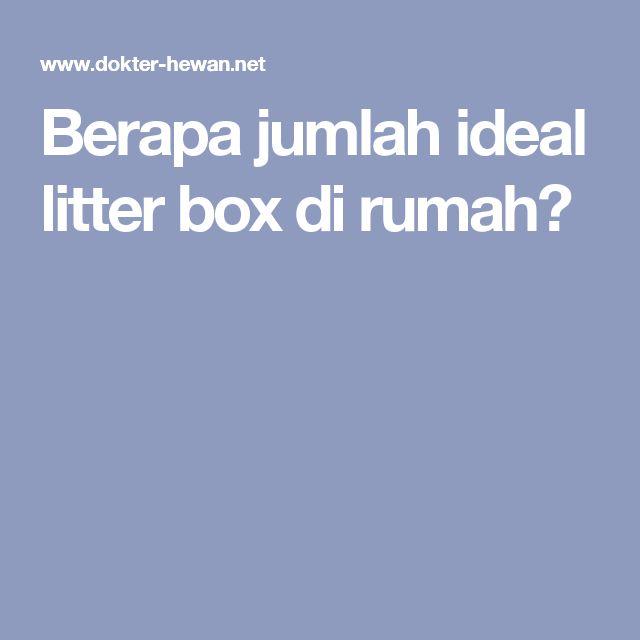 Berapa jumlah ideal litter box di rumah?