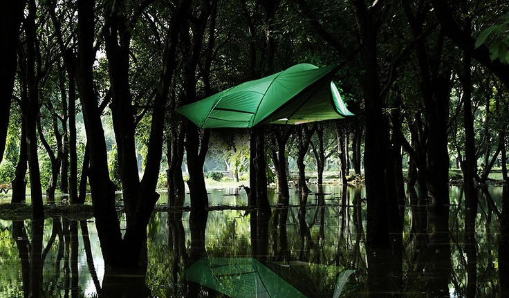 Tentsile Stingray - Awesome for camping!