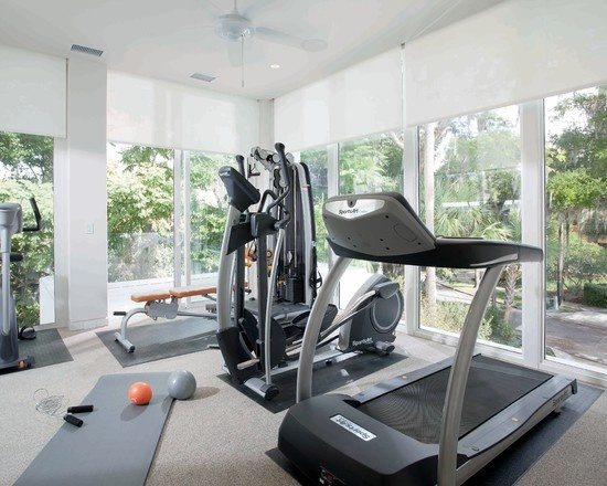 best home gym designs. modern home gym design, pictures, remodel, decor and ideas - page 2 best designs
