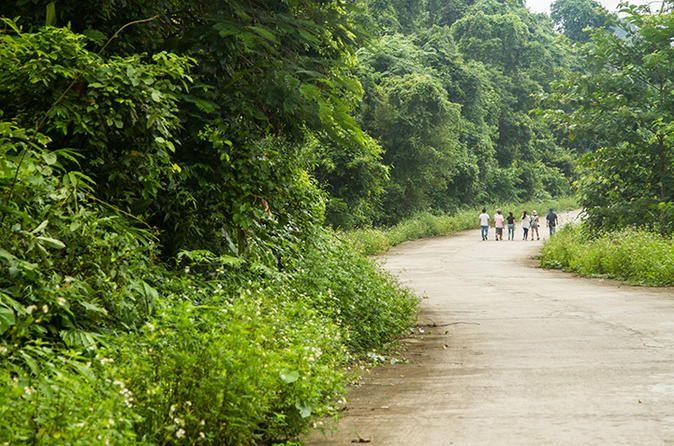 Day Trip to Cuc Phuong National Park from Hanoi - TripAdvisor