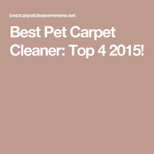Best Pet Carpet Cleaner: Top 4 2015!
