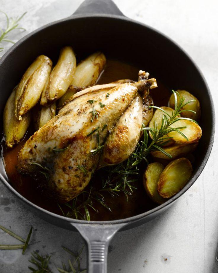 Fazant à la Brabançonne is een Belgische klassieker voor tijdens de donkere dagen en feestdagen. Het gekaramelliseerde witloof geeft het zijn typische smaak. #15gram