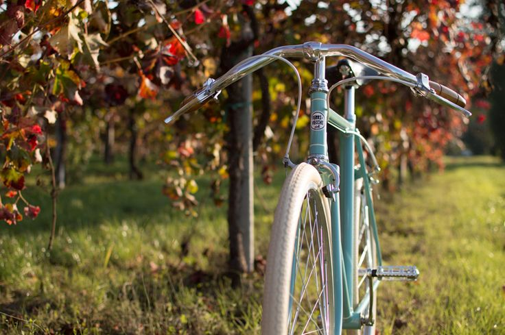 """Morris"" vintage single speed bicycle by Ferrivecchi cicli"