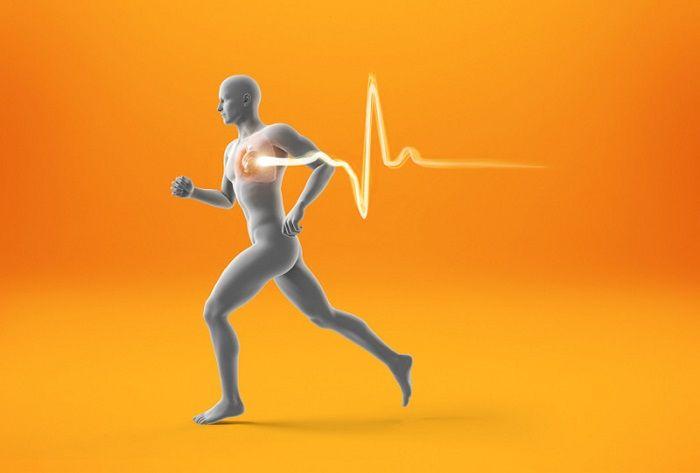 Συνένζυμο CoQ10: Ισχυρότατος παράγοντας υγιείας και μακροζωίας συμβάλλει στη μεγαλύτερη διάρκεια ζωής, σαν αποτέλεσμα της αύξησης των μιτοχονδρίων