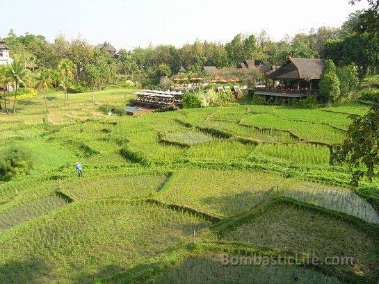 Four Seasons Chiang Mai
