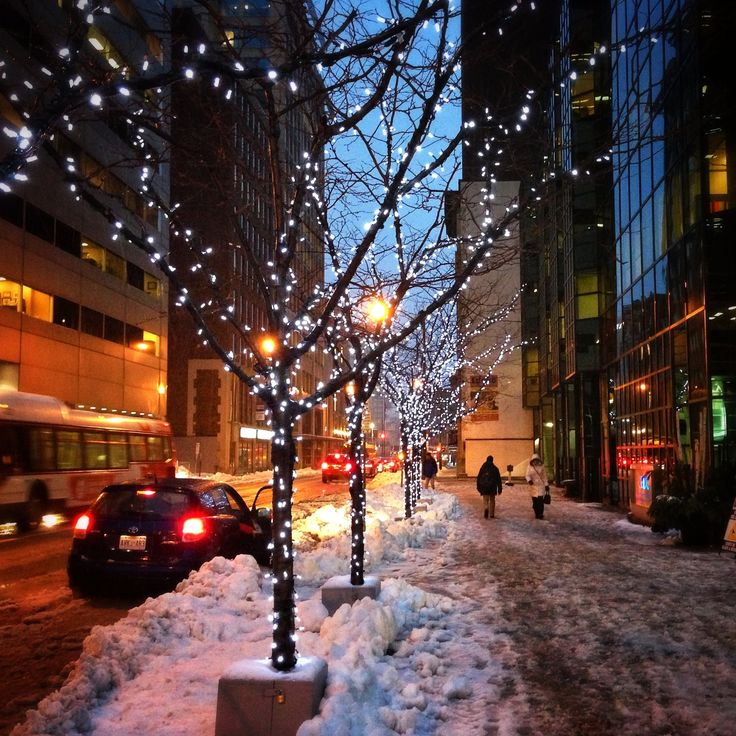 1000+ Images About Winter In Ottawa Ontario, Canada On