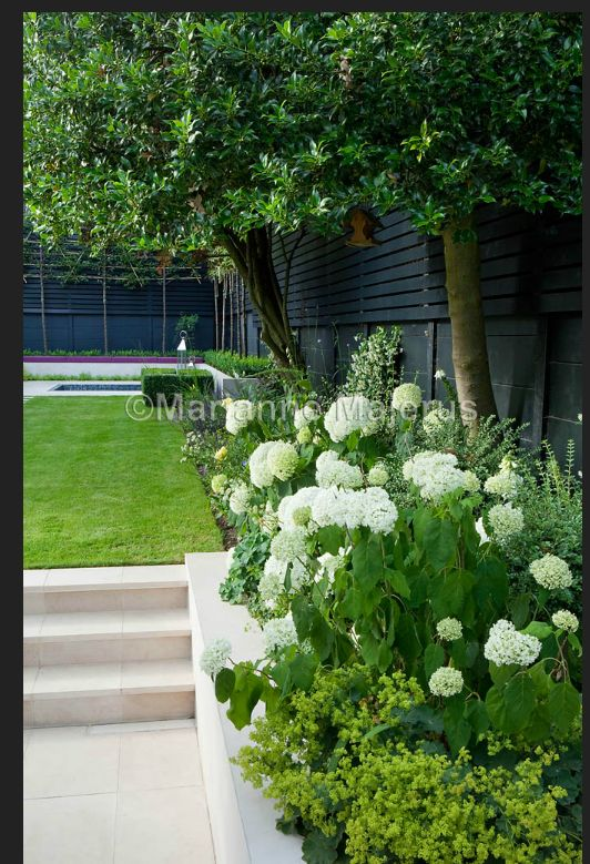 Black fencing, green and white garden design. Charlotte Rowe Garden Design More