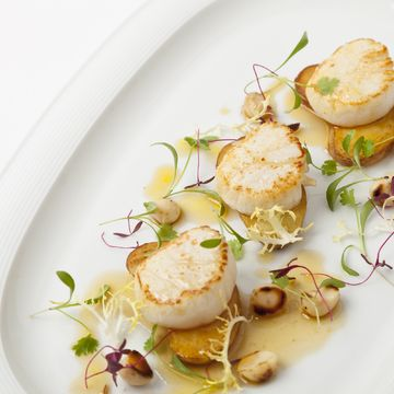 Hand Dived Scallops and Roasted Cobnut Salad, Maple Syrup Dressing by acclaimed Chef Adam Gray - Executive Chef at Skylon  #FOURMagazine