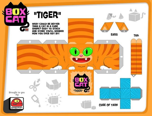 box cat-tiger
