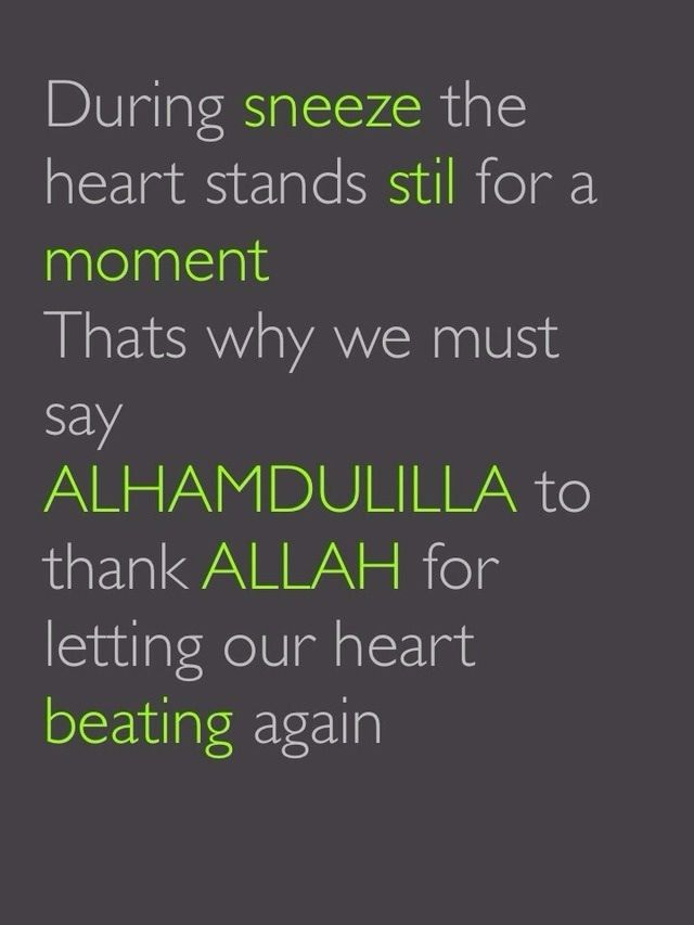 I sneezed today, said Alhamdulillah shiksh boo xode. Then I thought hm? Now, I know why. Alhamdulillah.