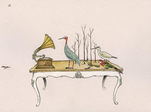 helen gibbins : birds emerging at c minor : helicopter6.com