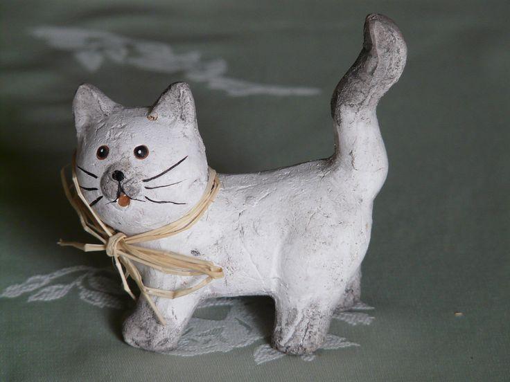 Vit katt.