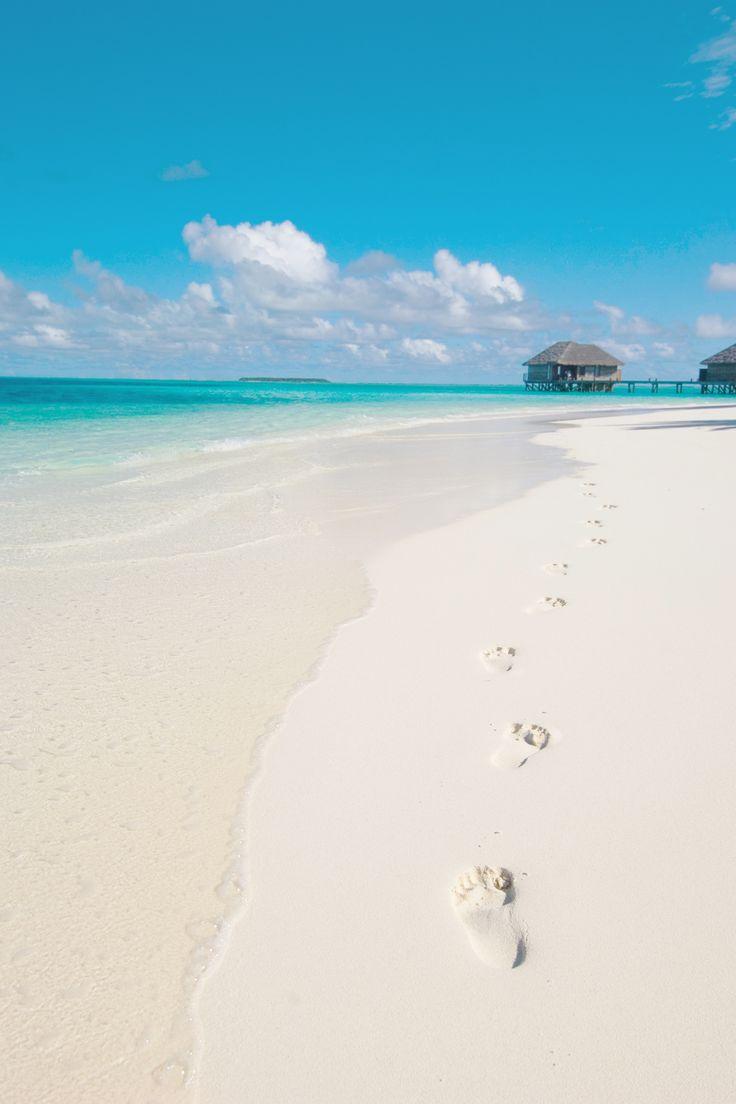 Spuren im Sand - Malediven. Den richtigen Koffer für eure Reise findet ihr bei uns: https://www.profibag.de/reisegepaeck/