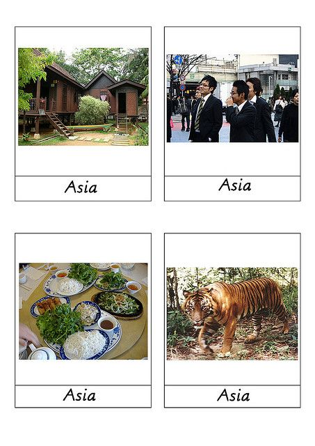 an introduction to the continent of asia The continent of asia is the world's largest and most populous continent with over  4 billion people calling asia home asia also contains the world's most.