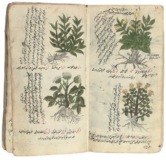 wish my sketchbook looked like this- 18th cent Turkish Treatise on Herbal Medicine @ poppytalk