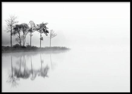 Stilren affisch med foto. Tavla med fotografi över skog och stilla sjö. Vackra tavlor och planscher med svartvita naturbilder. www.desenio.se