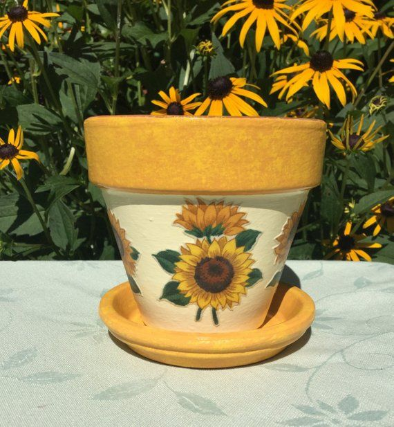 This 4 1 2 Inch Snippot Has Three Different Sunflowers On An Antique White Background The Rim And The Sau Painted Plant Pots Flower Pots Decorated Flower Pots