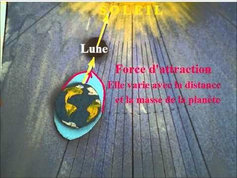 Lune et marées | cours vidéo gratuit ce1 ce2 cm1 cm2 cycle 3 - YouTube