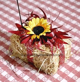 Apart of table decor, just the hay bails.  I wouldn't add any decor to it