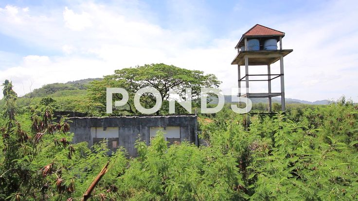 Abandoned Hotel Building Overgrown Plants Water Tower Trees Forest - Stock Footage | by RyanJonesFilms