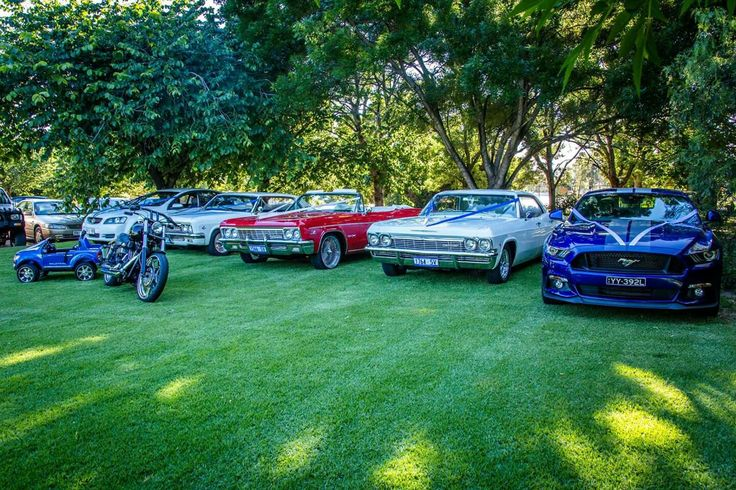 The Mustang, The chevvys , The VE & The Harley ♡ Photography credit to TB Photography and Videography