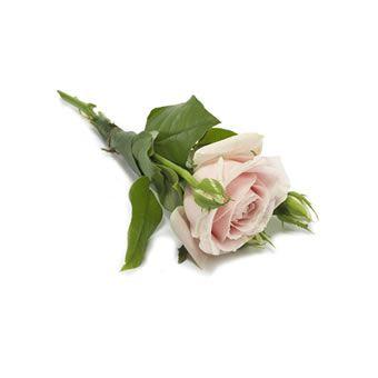 Rosa handbukett