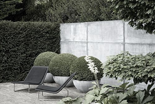 Concrete, topiary & structure | Tom Stuart Smith, Chelsea