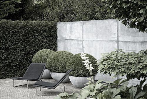 Concrete, topiary & structure   Tom Stuart Smith, Chelsea