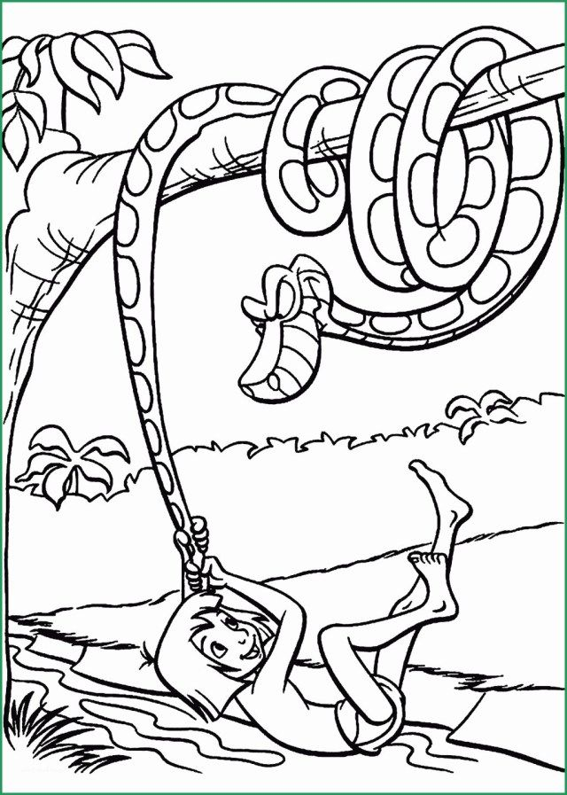 25 Creative Photo Of Jungle Coloring Pages Albanysinsanity Com Jungle Coloring Pages Animal Coloring Books Coloring Pages