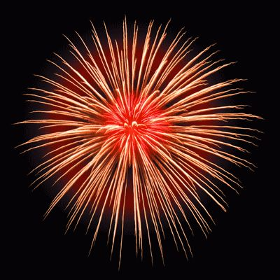 Google Image Result for http://danshamptons.com/wp-content/uploads/2011/07/fireworks.jpg.gif