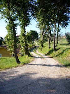 Would love to ride horseback up that road to a house that belongs to me...