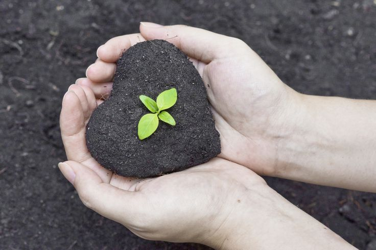 Engage: Employee Engagement Blog   Employees feel more loyal and more engaged at organizations that truly give back to the community, and who allow staff the chance to get involved.  #CSR